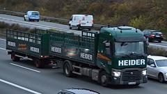 D - Heider Renault Range T (BonsaiTruck) Tags: heider renault range lkw lastwagen lastzug truck trucks lorry lorres camion caminhoes