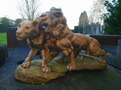 The love of Lions (Red Cathedral [FB theRealRedCathedral ]) Tags: lion lioness love cemetary kerkhof cimetiere deurne antwerpen sintfredeganduskerkhof sintfredegandus