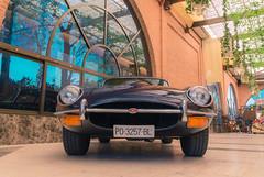 Jaguar E Type 4.2 1969 (Miguel Ángel Prieto Ciudad) Tags: car photography transportation retro style old vintage sports luxury history collectors classic elegance british automotive automobile motorcycle sonyalpha alpha3000 chanoe
