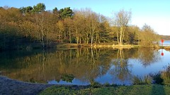 Bathpool, Kidsgrove, Staffordshire (philept1) Tags: water winter reservoir outdoors potteries staffordshire stoke kidsgrove lake countryside view bathpool reflection trees