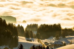 Plaine Joux (Sébastien Locatelli) Tags: 2019 sébastien locatelli canon eos 7d ef 70300mm f456 l is usm mountain montagne hiver winter plaine joux hautesavoie france snow neige