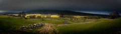 The wonderful Wensleydale light (Durham Stephen) Tags: panorama north yorkshire wensleydale sony a7iii light dales