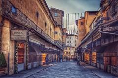 Ponte Vecchio - Florencia (bervaz) Tags: sony a7rm3 fe1635mmf28 gm italia toscana centrohistorico street puente bridge