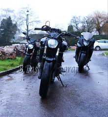 BME10819 (B.East Photography) Tags: motorbike motorsport motorvehicle helmet yamaha canon canon5d canon70mm200mmf28 canon750d bike bikes biker bikers laura