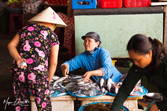 "Vietnam - The Market - 1 • <a style=""font-size:0.8em;"" href=""http://www.flickr.com/photos/8364105@N02/49301028113/"" target=""_blank"">View on Flickr</a>"