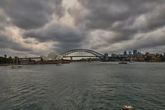 Sydney harbor view