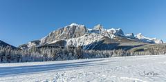 IMG_0950 (Scott Martin - Photographer) Tags: quarrylake canmore alberta canada ca winter snow mountains trees