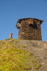 Loyal (E-C-K ART) Tags: strayer ushguli georgia grusja rocks mountain hike dog k9 honest loyal stone cottag