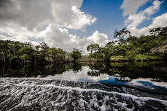Sky reflections in boat wake (Justin Kanner) Tags: sky reflection symmetry waves wake water boat clouds island river seascape landscape cloudscape canon canon6d 6d 14mm wideangle beach scenic serene peaceful wave bahamas riverboat