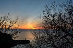 Sunset (Antti Tassberg) Tags: silhouette puu suomenlinna landscape helsinki suomi auringonlasku aurinko finland scandinavia sun sundown sunset suokki sveaborg tree viapori