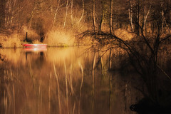Fireworks of nature (Zoom58.9) Tags: trees boat lake reflection golden nature landscape outside europe germany bäume boot see reflektion natur landschaft draussen europa deutschland