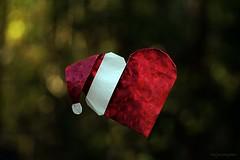 Origami Santa's Heart (Alexander Poddubny) (De Rode Olifant) Tags: origami origamisantasheart origamiheart paper papiroflexia alexanderpoddubny marjansmeijsters marianozavala origamipapercraft amazingeasyorigamiyakomoga xmas christmas tutorial presents crazytuesday