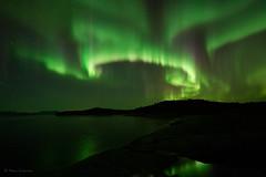 Happy New Year 2020 ! (Petra Schneider photography) Tags: hamarøya norge norway nordnorwegen northernnorway auroraborealis auroresboréales nordlys northernlights nordlicht polarlicht polarlichter