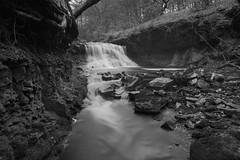"""RODDLESWORTH WOODS WATERFALL, RODDLESWORTH, LANCASHIRE, ENGLAND. (ZACERIN) Tags: """"roddlesworth woods waterfall"""" """"roddlesworth"""" """"lancashire"""" """"england"""" """"pictures of waterfalls"""" waterfalls in lancashire"""" """"christopher paul photography"""" """"zacerin"""" long exposure """"waterfalls exposure"""" """"long pictures"""" """"h2o"""" """"blue"""" """"water"""" """"uk"""" england"""" uk"""" united kingdom"""" """"anglezarke moor"""" """"anglezarke"""" """"river roddlesworth"""" roddlesworthwaterfall christopherpaulphotography zacerin outdoors lancashire woodland"""