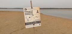 Endangered_2 (Tony Markham) Tags: sign warningsign endangeredspecies lake wetland ramsar culburrabeach shoalhaven berejiklianbushfires lakewollumboola