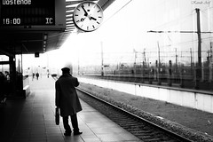 """""""Waiting the Train for 2020, Happy New Year!!!"""" (Arif Kavak Street Photography) Tags: man station train trainscape travel newyear 2020 life flickr photoderue people personnage photography monochrome mono noiretblanc noir blanc black white blackwhite bw bnw belgium belgique streetphotography street sun sky sncb nmbs shadows reflect reportage"""