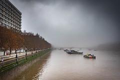River (100 Real People) Tags: nikond750 nikkor35f20 thames river water bridge fog mist morning light housesofparliament stthomashostpital trees riversidewalk southbank london londoncity moody evocative clouds boats