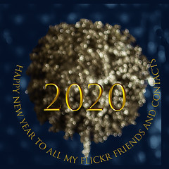 Best wishes for the new decade (Wendy:) Tags: newyearcard bauble bokeh gold typography