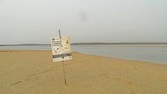 Endangered_1 (Tony Markham) Tags: sign warningsign endangeredspecies lake wetland ramsar culburrabeach shoalhaven berejiklianbushfires lakewollumboola