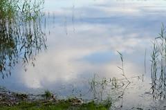 Happy New Year, Buon Anno Nuovo, Gott Nytt År (Stefano Rugolo) Tags: pentax happynewyear k5 feliceannonuovo gottnyttår smcpentaxm100mmf28 pentaxk5 stefanorugolo sky lake reflection clouds impression sweden