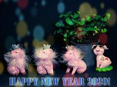 Frohes Neues Jahr 2020 / Happy New Year 2020 / #92 Explore 31.12.2019 (ingrid eulenfan) Tags: silvester neujahr happynewyear posit glück gesundheit wohlstand wünsche feier sonyalpha6000 sony 2020 flickrteam freunde flickrfriends