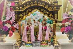 Sri Sri Gaura Nitai (Jason Khoo Photography) Tags: spirituality flickr nikkor35mm deity harekrishna hinduism colour yoga bhakti devotion worship