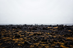 Amazing Iceland - Reynisfjara VI (Passie13(Ines van Megen-Thijssen)) Tags: 2019 ijsland iceland island reynisdrangar reynisdrangarrockformations reynisfjara reynisfjarablacksandbeach blacksandbeach columnarbasalt dangerous vik ocean people canon fineart inesvanmegen inesvanmegenthijssen fog mist nevel nebel