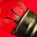 Torch Bulb 4.8V 0.8A