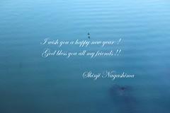 Happy New Year ! (Shinji.Nagashima) Tags: i wish you your family blessed new year
