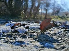 Otzarreta (eitb.eus) Tags: eitbcom 33437 g1 tiemponaturaleza tiempon2019 invierno bizkaia zeanuri nereazuloagasalsidua