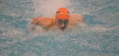 2019-20 - Swimming & Diving (Girls) - NYSFSSAA Championships - Day 02 -122 (NYCPSAL) Tags: 201920 swimming diving girls nysfssaa championships new york state city high school athletic league psal public schools nyc swimmingdiving swimminganddiving publicschoolsathleticleague newyorkstatefederationofsecondaryschoolathleticassociations division climate wellness ithaca college 201920swimmingdivinggirlsnysfssaachampionships federation secondary associations robert warren and federationchampionships