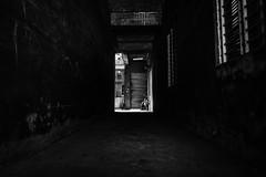 Alley (jeremy_d_smith) Tags: fuji fujifilm fujinon fujix fujixseries xseries x fujilove taiwan kaohsiung xt3 street streetphotography urban classicchrome xf16mm xf16mm14 blackandwhite bw monochrome
