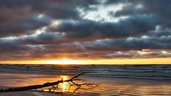 Today's evening stroll (Dec 31, 2019) (ms.gulbis) Tags: walking water balticsea winter clouds waves branch wood sunset sea seashore sky seascape seaside sun reflection