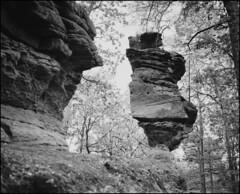 o.t. (jo.sa.) Tags: felsen felsenland analog schwarzweiss analogefotografie schwarzweissfotografie südwestpfalz bw sw natur monochrom mittelformat rollfilm plaubel makina67 nikkor