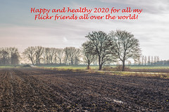 Happy new year! (RuudMorijn-NL) Tags: agriculture arable autumn background bare brown clay country countryside cultivated dirt dirty earth europe farmland field ground horizon land landscape lines mud muddy natural nature nobody outdoor perspective plowed puddle ridges row rural scene season seasonal silhouette sky soil surface texture track tree view water weather wet drimmelen noordbrabant northbrabantherfst najaar akker nat bomen kaal silhouet bewolkt wolkenlucht hemel perspectief plas road weg landweg lanschap landelijk lijnen textuur