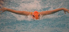 2019-20 - Swimming & Diving (Girls) - NYSFSSAA Championships - Day 02 -123 (NYCPSAL) Tags: 201920 swimming diving girls nysfssaa championships new york state city high school athletic league psal public schools nyc swimmingdiving swimminganddiving publicschoolsathleticleague newyorkstatefederationofsecondaryschoolathleticassociations division climate wellness ithaca college 201920swimmingdivinggirlsnysfssaachampionships federation secondary associations robert warren and federationchampionships