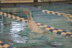 2019-20 - Swimming & Diving (Girls) - NYSFSSAA Championships - Day 02 -113 (NYCPSAL) Tags: 201920 swimming diving girls nysfssaa championships new york state city high school athletic league psal public schools nyc swimmingdiving swimminganddiving publicschoolsathleticleague newyorkstatefederationofsecondaryschoolathleticassociations division climate wellness ithaca college 201920swimmingdivinggirlsnysfssaachampionships federation secondary associations robert warren and federationchampionships