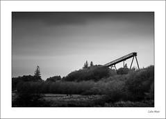 Old Conveyor - (Jupiter 11, 135mm, f11) - 2019-12-27th (colin.mair) Tags: ayrshire bw black hunterston jupiter11 lens m39 manual russian ussr white border f11 frame monochrome trees