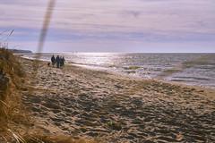 025395a  Family Time On Christmas Day (David G. Hoffman) Tags: family lake lakeshore lakemichigan beach beachgrass waves clouds vanishingpoint sundaylights