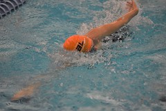 2019-20 - Swimming & Diving (Girls) - NYSFSSAA Championships - Day 02 -144 (NYCPSAL) Tags: 201920 swimming diving girls nysfssaa championships new york state city high school athletic league psal public schools nyc swimmingdiving swimminganddiving publicschoolsathleticleague newyorkstatefederationofsecondaryschoolathleticassociations division climate wellness ithaca college 201920swimmingdivinggirlsnysfssaachampionships federation secondary associations robert warren and federationchampionships