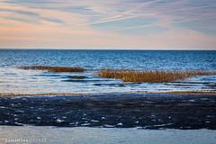First Encounter Beach (Samantha Decker) Tags: capecod tamron tamronsp150600mmf563divcusd ma massachusetts newengland telephoto canoneos6d samanthadecker outercape eastham unitedstatesofamerica