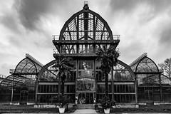 Cathédrale de verre (Cyrille Gr) Tags: rhone bw lyon architecture parcdelatêtedor noirblanc serres