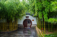 Entrance (E. Aguedo) Tags: temple dacien xian china colors round bambu architecture shrine outdoors day entrance building