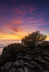 Atardecer desde el Montsec d'Ares (sostingut) Tags: hdr nikon tamron haida paisaje atardecer árbol roca madera hierba cielo nube luz color soledad niebla invierno montaña sierra