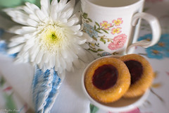My New Years Wish (Phyllis Freels) Tags: composerpro phyllisfreels sweet35 blue closeup cookies cup flowers green lensbaby pink soft stilllife white