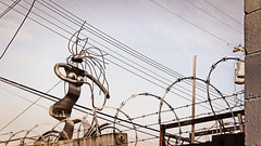 2020 — Leading the way (pjwoodland) Tags: art sculpture ronsimmer sculptor vancouver metalwork wire barbedwire