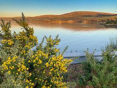 IMG_2075_adj (md93) Tags: northayrshire scotland unitedkingdom largs portencross sunset clyde