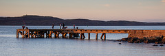 IMG_1323_adj (md93) Tags: largs portencross sunset clyde scotland