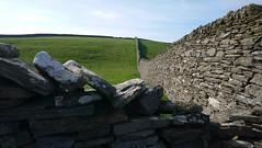 Stone fences