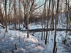 ... (Jean S..) Tags: river water snow trees landscape day outdoors park blue white
